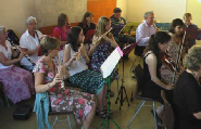 Freeland Orchestra - July 2009